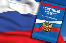 Семейный кодекс РФ с положениями об уплате алиментов