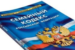Возможность обращения в суд по неуплате алиментов согласно СК РФ