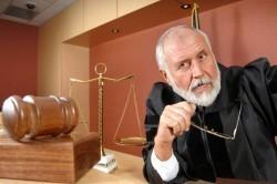 Определение размера алиментов через суд